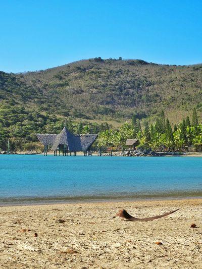 Paradise Relaxing Enjoying Life Seascape Nouvelle Calédonie Carte Postale Beach