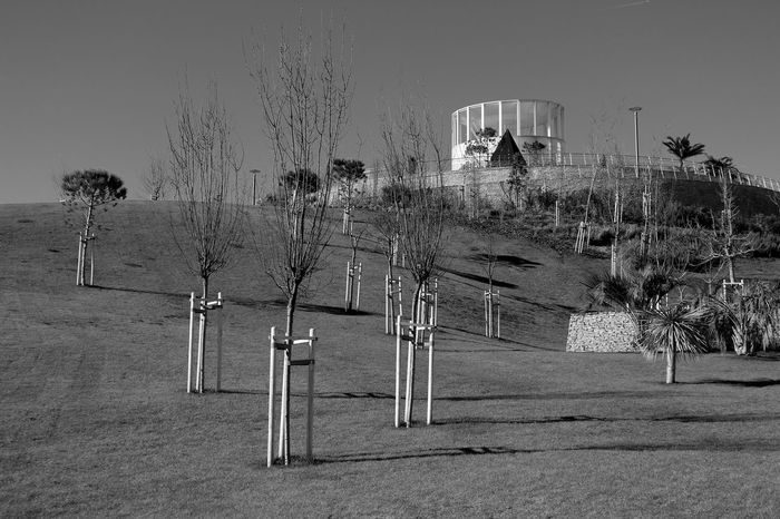 At The Park Building Gardens Hills Bnw Arquitecture_bw Sky And Clouds Greenery EyeEm Nature Lover Eye4blackandwhite EyeEmbestshots EyeEmBestPics Urban Landscape Eyeemphotography Black And White Eye4photography  EyeEm Black & White Eye4black&white  Blackandwhite EyeEm Bnw Taking Photos at Parque Dos Poetas Portugal Showcase: January