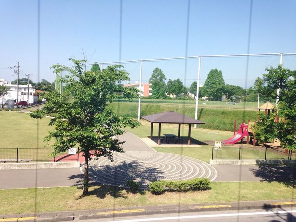 Lifeisbeautiful Life Park Japan Day Outdoors Clear Sky Window View