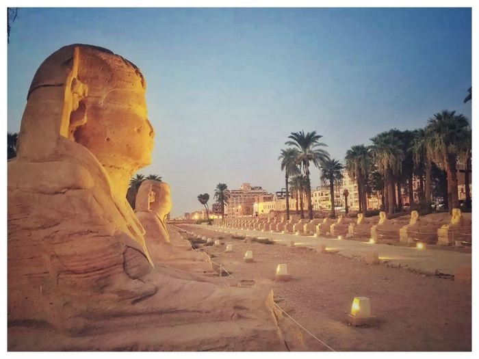 Blue Day Egypt Egyptian Luxor Amon Temple No People Outdoors Road Scenics Spirituality Statue Sunlight The Way Forward Tourism Tranquil Scene Tranquility Travel Destinations Tree
