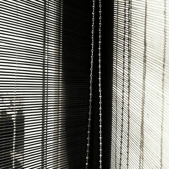 Light And Shadow at the Window ... Window Shade Black & White Monochrome Schwarzweiß Sunlight Shadow Contrast Pattern Pieces