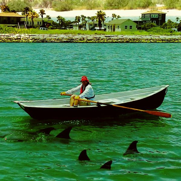 Sharks Or Dolphins Boat Man In A Boat Boats That Floats Green Water Blue Sky Rowing Boat Land Houses In Background Red Hat Ocean View Gulf Of Mexico Man Working Out Palm Trees 2 In 1 Photograph