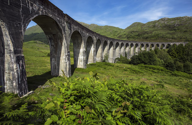 Glenfinnan historic rail viaduct in Scottish Highlands, Uniited Kingdom Glenfinnan Viaduct Train Scotland Jacobite Steam Railway Hogwarts Express Landscape Journey Mountains Highlands Scottish Potter Bridge Harry Travel Scenery Landmark Tourism Locomotive Nature Summer Famous Arch Plant Architecture Built Structure Bridge - Man Made Structure Green Color Sky Arch Bridge Connection Beauty In Nature Tree Day No People Scenics - Nature Growth Mountain Water Outdoors Architectural Column Ancient Civilization Arched