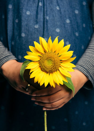 Flowering Plant Flower Yellow Plant Freshness Fragility One Person Human Hand Beauty In Nature Flower Head Vulnerability  Petal Hand Inflorescence Holding Real People Close-up Pollen Human Body Part Nature Sunflower Outdoors Finger