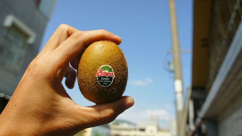 Kiwi…my favorites! Fruit Kiwi Food Afternoon Relaxing SonyNEX5n Hi! Enjoying Life