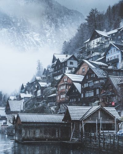 Hallstatt winter mornings Winter Hallstatt, Austria Hallstatt Architecture Building Exterior Built Structure Snow Winter Cold Temperature House Building Nature Tree Snowing Residential District Sky No People Plant Day Environment Outdoors Frozen Extreme Weather