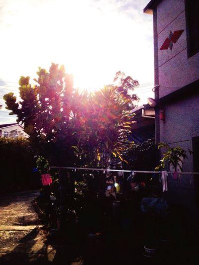 這是個溫暖又溫馨的家 傍晚總是讓人著迷☺️☺️? First Eyeem Photo