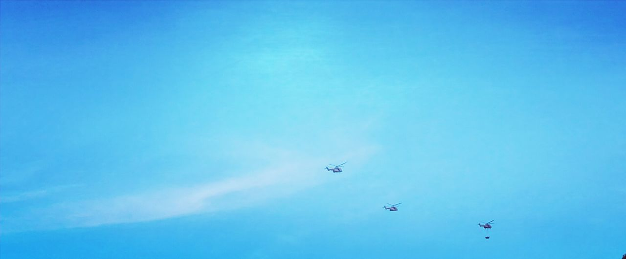 flying, blue, airplane, low angle view, air vehicle, mid-air, sky, airshow, mode of transport, transportation, day, military airplane, outdoors, teamwork, fighter plane, no people, clear sky, nature, vapor trail, beauty in nature