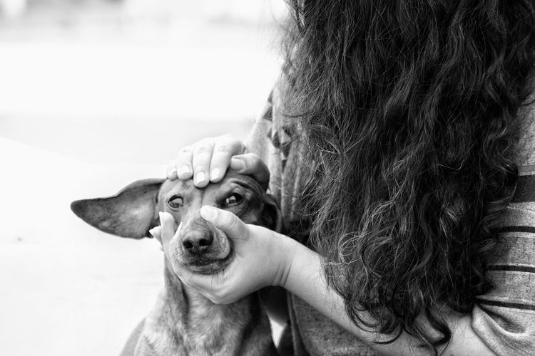 Enjoy The New Normal Pets Dog EyeEm Best Shots - Black + White Love Black And White Photography Petsofeyeem Pet Photography  Dachshunds EyeEm Best Shots - People + Portrait Real People Gorgeous Girl Young Adult Petsandanimals Pet Portraits