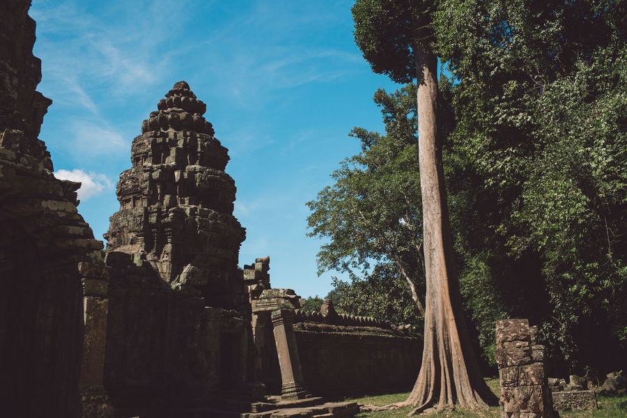 Siem Reap Cambodia Angkor Tree Ancient History Sky Plant Nature Built Structure Architecture The Past Travel No People Religion Day Old Ruin Belief Tourism Ancient Civilization Place Of Worship Travel Destinations Outdoors Archaeology