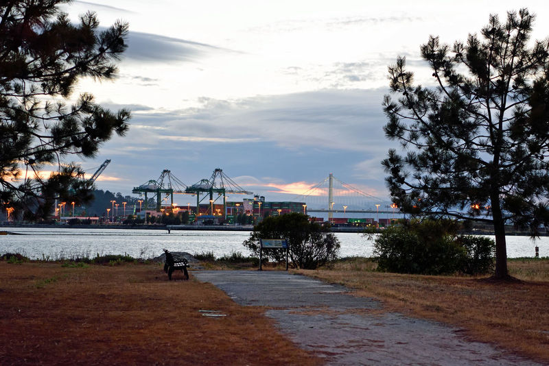 Sunset @ Middle Harbor 9 Port Of Oakland, Ca. San Francisco Bay Estuary Cove Bay Bridge New Span Tower Eastern Span Gantry Cranes Maritime Waterfront Port Containers Sunset Shoreline Park Park Benches Wakkway To Shore View Through Trees Sunset Photography Sunset And Clouds  Sunset_collection Water Sunset Lovers Sunset_collection Landscape Landscape_photography Landscape_Collection