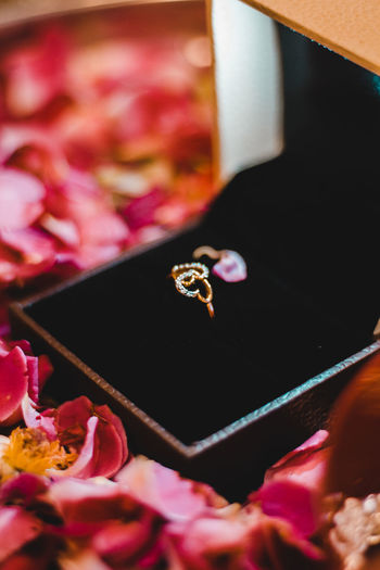 Flower Pink Color Flowering Plant Close-up Plant Selective Focus Jewelry No People Indoors  Ring Diamond - Gemstone Freshness Beauty In Nature Still Life Metal Wedding Ring Container Box Love Rosé Precious Gem Personal Accessory Springtime Decadence The Portraitist - 2019 EyeEm Awards