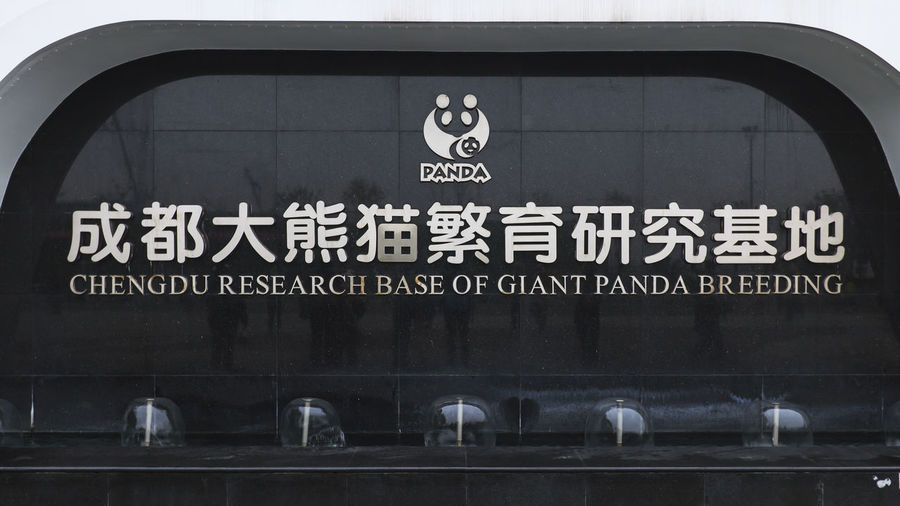 Chengdu, China - December 11, 2018: Close up of the Chengdu research of Giant Panda breeding sign in Chengdu Chengdu China ASIA Giant Panda Sign Breeding Center Text Communication Western Script Information Information Sign