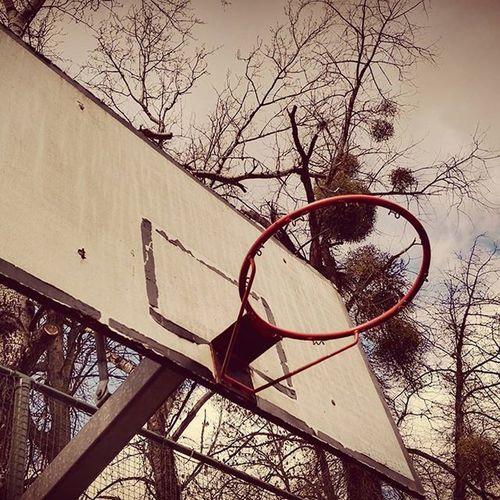 Belgique Belgie Belguim Basket Panneaudebasket Sport Pics Photographie  Mraa3003 Animation Job Centredevacances Heersurmeuse Photography Photos Basketball Alternative Fitness