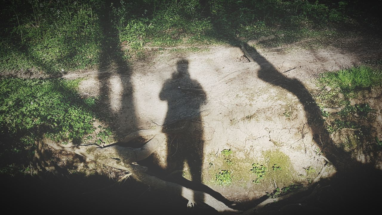 shadow, real people, focus on shadow, sunlight, high angle view, tree, day, lifestyles, outdoors, men, leisure activity, silhouette, standing, nature, full length, mammal, people