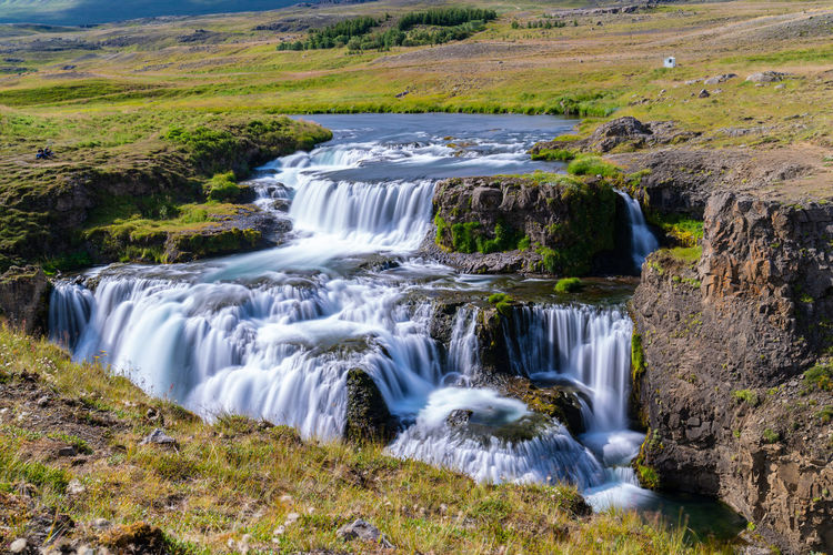Reykjafoss Perfect Day Beautifuliceland Beauty In Nature Blurred Motion Day Environment Flowing Flowing Water Forest Land Landscape Long Exposure Motion Nature No People Non-urban Scene Outdoors Plant Rainforest Rock Scenics - Nature Stream - Flowing Water Tree Water Waterfall