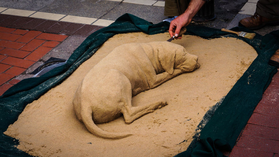 A sand sculpture of a dog create by a street artist Adult Day Domestic Animals High Angle View Human Body Part Human Hand Human Leg Low Section Mammal Men Occupation One Animal One Person Outdoors People Real People Sand Sand Sculpture Working