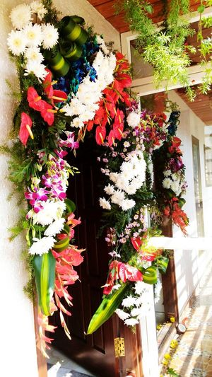 Hanging Flowers Flowers Rituals Door Blue Orchids Purple Orchids Decoration Orchids Anthorium Flower House Warming Ceremony Flower No People Nature Plant Multi Colored Close-up Day