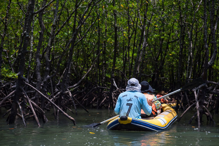 Rear view of men in boat against trees in forest