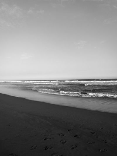 The sea line