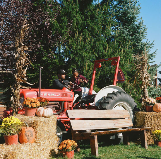 Shopping Tractors Autumn Bench Day Fall Colors Festival Ford Gourds Great Pumpkin Party Hay Bale Outdoors Park People Pumpkin Tractor Tree