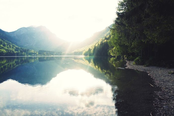 """""""Langbathsee"""" - truly one of my favorite places on this planet. EyeEm Best Shots Check This Out Nature Landscape The Great Outdoors - 2016 EyeEm Awards"""