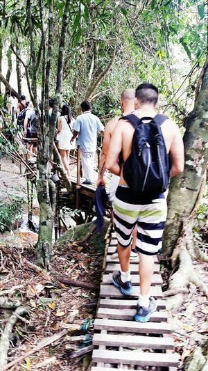 Visitors Wooden Bridge Waterfalls II Samui_thailand