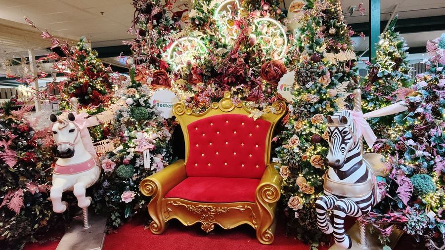 High angle view of various flowers in shop for sale
