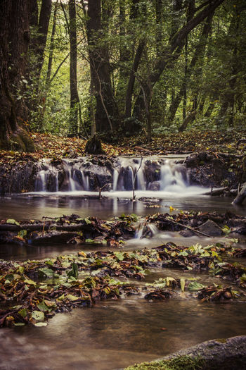 Autumn Beauty In Nature Blurred Motion Bükk National Park Day Forest Growth Hungary Idyllic Long Exposure Motion Nature No People Outdoors Rock - Object Scenics Tranquil Scene Tranquility Travel Destinations Tree Water Waterfall