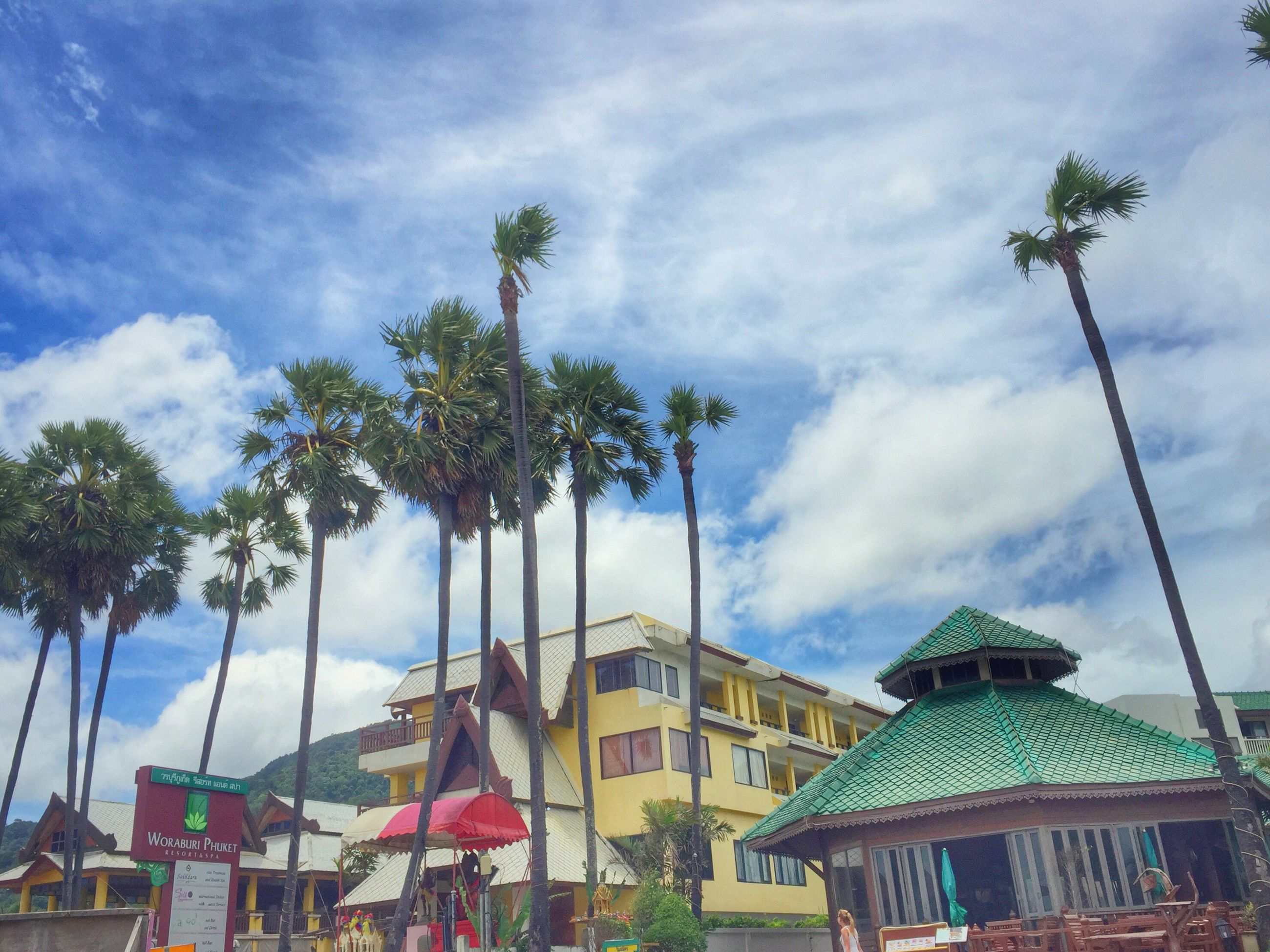 sky, architecture, built structure, tree, cloud - sky, low angle view, cloudy, palm tree, cloud, residential building, residential structure, day, outdoors, growth, nature, no people, overcast, weather, beauty in nature, blue, green color