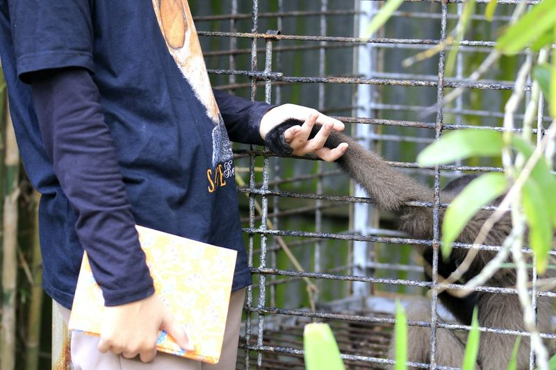 My Hand Love Animal Animal Themes Human Hand Volunteer Men Close-up