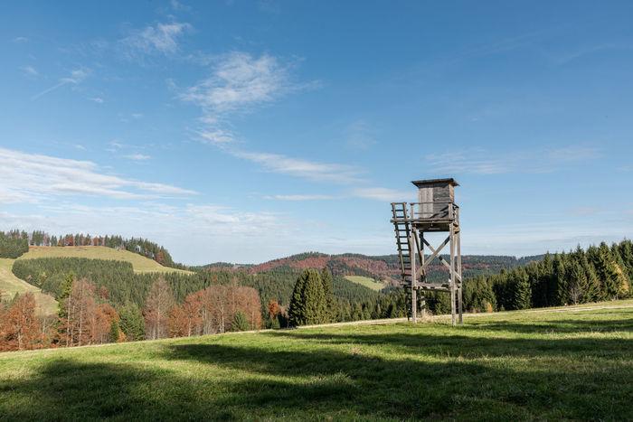 Allgäu Ansitz Bäume Deutschland Grass Herbst Himmel Jagd Keine Menschen Landschaft Wolken Bayern Natur Schatten Tag Wald