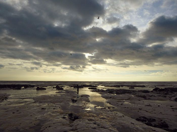 Grey Day Grey Sunset Grey Sky Sea And Sky Seaside Tidesout Beach Beachphotography Brighton