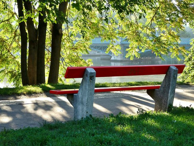 What a beautiful autumn day today... 💛🍁🍂🍃 Autumn Relax At The Park Bench Benchlovers Zugló Trees Peaceful Place Fall_collection