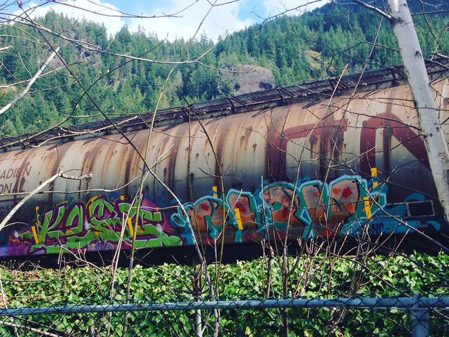 Here Belongs To Me Beautifulbc Graffiti Art Traingraffiti LionsBay Graffiti Streetart Spray Paint Graffitiporn The Street Photographer - 2017 EyeEm Awards Graffitiworldwide No People Visual Feast Nature Train Trainphotography Graffitiart Spraypaint Transportation Beauty In Nature Beautiful British Columbia Train Graffiti