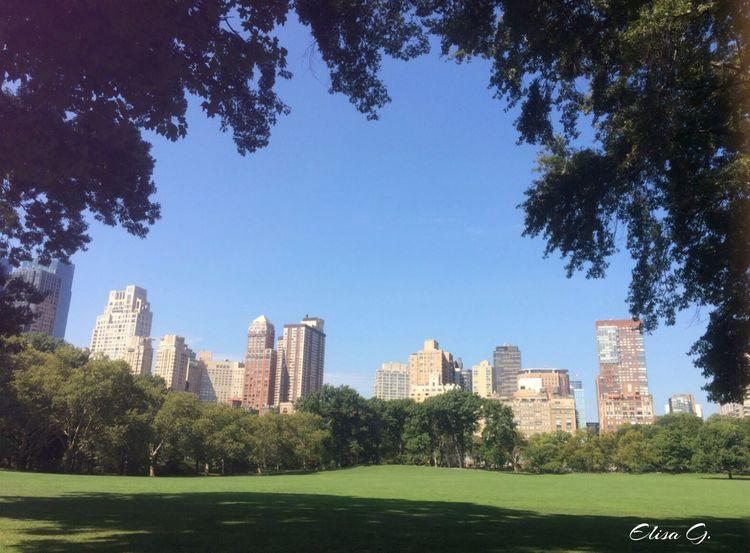 New York NYC Tourists USA Central Park Central Park - NYC Central Park, New York Beautiful City Hello World Ogni Viaggio Ha Un Suo Ricordo ..❤ Luna De Miel