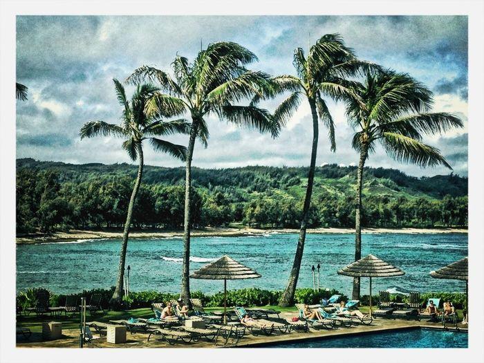 Love In Hawaii