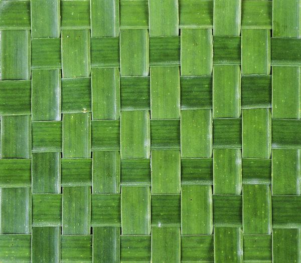 Full frame shot of green plants