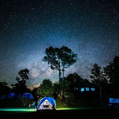 Break The Mold Night Star - Space Tree Milky Way Sky Star Field Park - Man Made Space Illuminated Blue No People Constellation Astronomy Nature Galaxy Beauty In Nature Soccer Field Space Outdoors