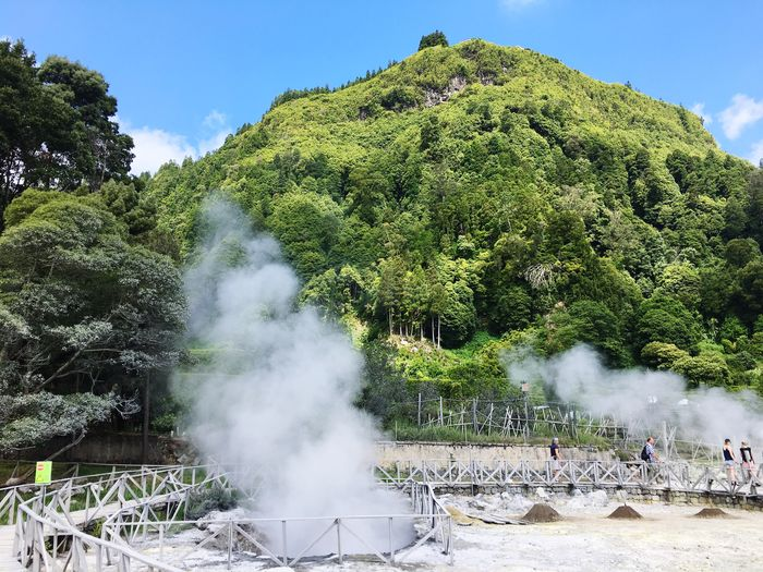Furnas lake, natural steam Volcanic  Volcanic Landscape Steam Azores Furnas Lake Plant Tree Smoke - Physical Structure Sky Nature Day Sunlight Outdoors No People Smoke Green Color Heat - Temperature Beauty In Nature Land