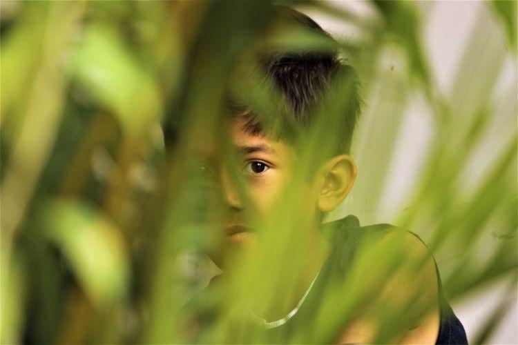 Close-up portrait of boy seen through plants