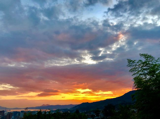 A Majestic Sunset Sky. (180916-181014) Sky Cloud - Sky Sunset Tree Beauty In Nature Scenics - Nature Plant Nature Environment Non-urban Scene Landscape Dramatic Sky Orange Color Silhouette Idyllic Tranquility Tranquil Scene Outdoors No People Low Angle View