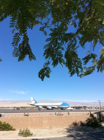 Just your average Presedential aircraft Palm Springs International Airport Feb 2016 Palm Springs CA. I-pad Photography Blue Sky Morning Sunshine Shadow Blue And White American Government property Green Leaves From Nearby Tree Security Wall Aircraft Parking