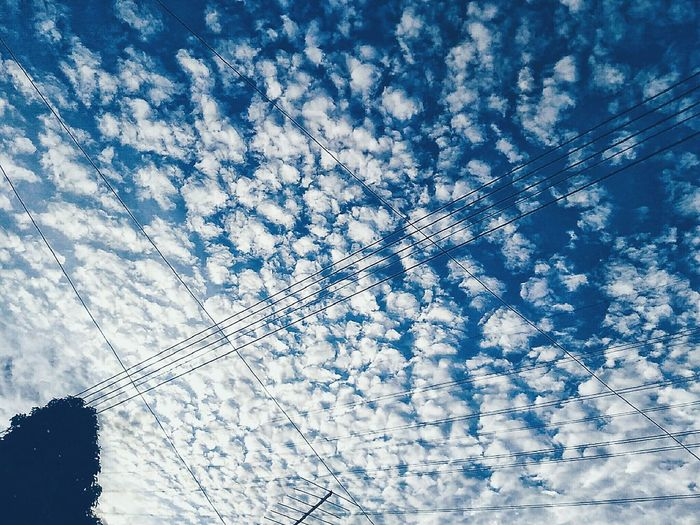 Cloud. Backgrounds Full Frame Nature Sky Beauty In Nature Blue Cloud - Sky Outdoors Freshness Low Angle View Day Eyeem Photography EyeEm EyeEmPortraits Ilovephotography Zenfonemax EyeEm Gallery EyeEm Team Zenfoneglobal EyeEm Gallery Zenfone Zenfonecam Zenfone Photography Zenfonephotography Zenfonemalaysia Zenfonemax Zenfonegraphy Nature EyeEm Best Edits