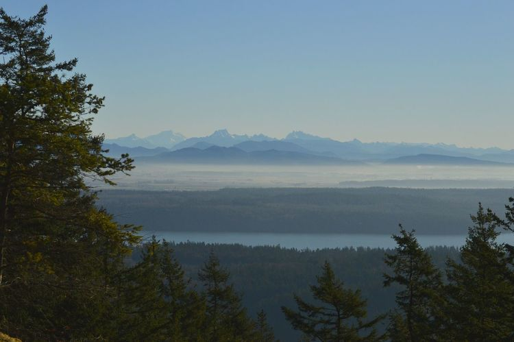 Mountains Scenics Clouds And Sky Anacortes Washington State PNW Nature_collection No People Tree Mountain Water Forest Fog Pine Tree Blue Sky Wilderness Calm