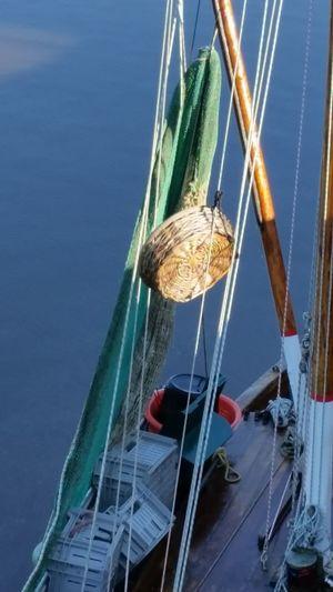 Mast No People Sailboat Water Nautical Vessel Sea Maritime Dangast Hafen