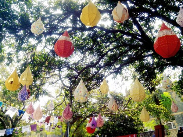 EyeEmNewHere Hanging Nests Kalaghoda Colours Tree Art Creativity Pattern Colorsoflife Day Outdoors