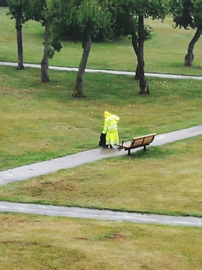 Finaly the rain came! Tree One Person Adult Outdoors Working Hard Beauty In Nature Real People The Hospital Park