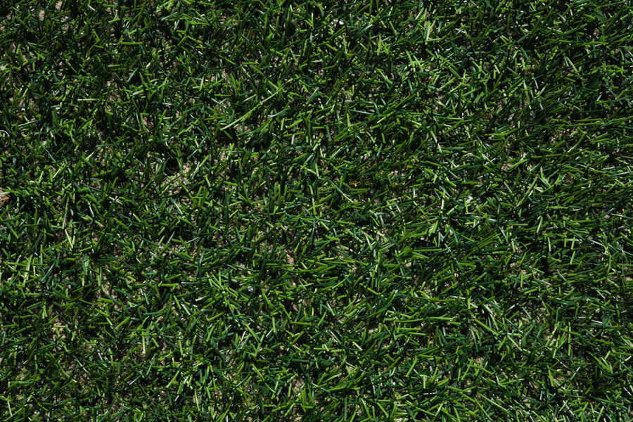 Field Background Day Field Full Frame Grass Green Color Growth High Angle View Nature No People Outdoors Plant Sports Texture Turf