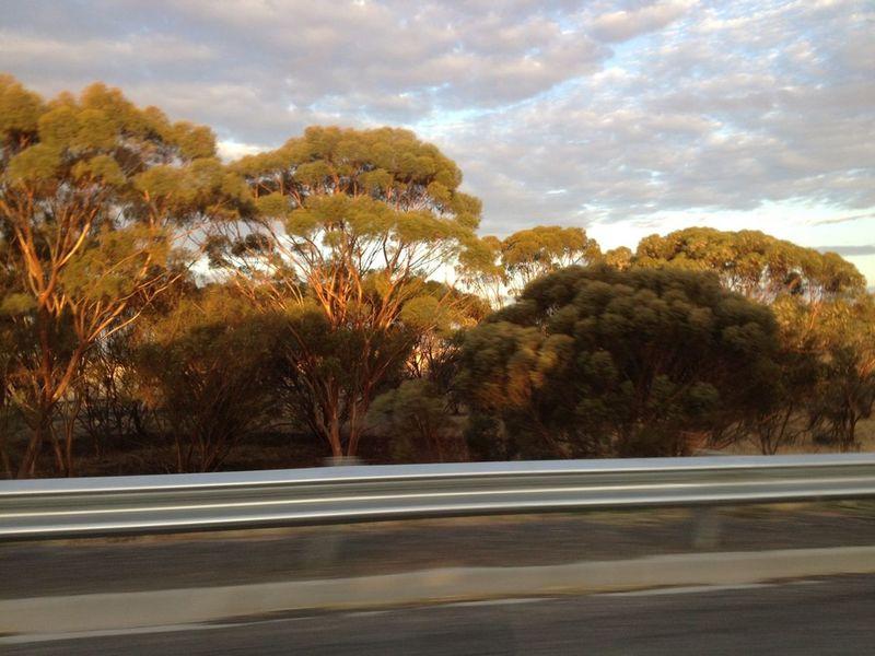 Roadtrippin' The Purist (no Edit, No Filter) NEM Landscapes Australian Landscape